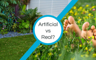 artificial vs real